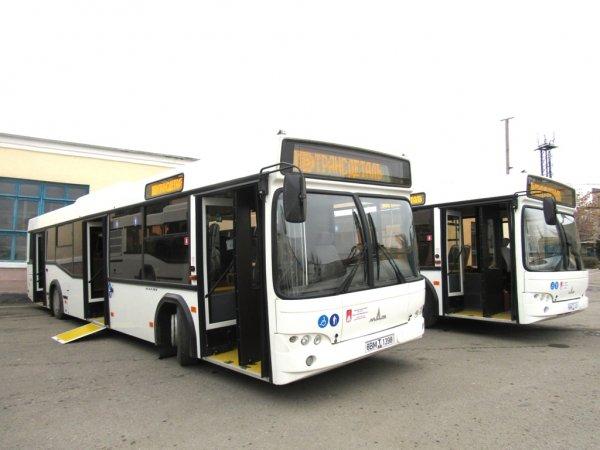 Новые направления общественного транспорта в Ростове заработают в ноябре