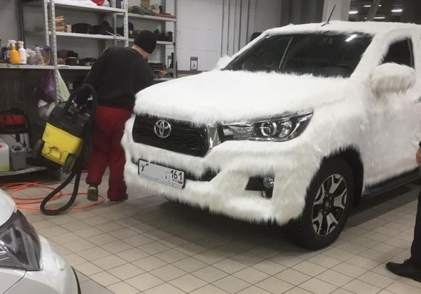 Самый милый «Крузак»: «Мохнатый» Toyota Land Cruiser удивил сеть