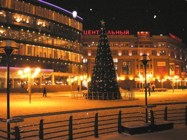 На главну новогоднюю елку в Нижнем Новгороде потратят больше 10 млн рублей