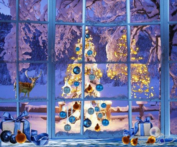 За самое сказочное и новогоднее окно новосибирцы получат подарки