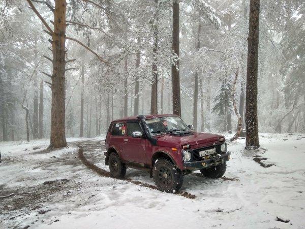 «Прадо отдыхает!»: «Нива» показала всю свою мощь на снегу