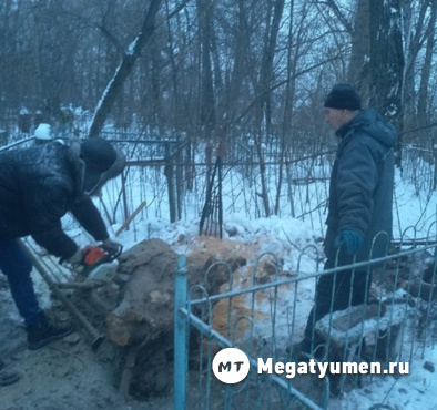 Хоронят заживо: тюменцы сообщают о жутком происшествии на кладбище - фото
