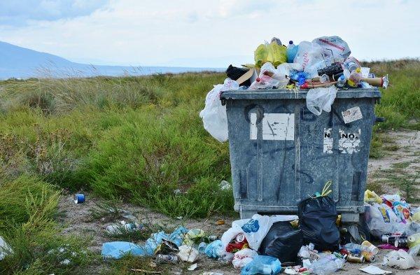 «Мусорная реформа» в действии: Россия стремительно тонет в мусоре