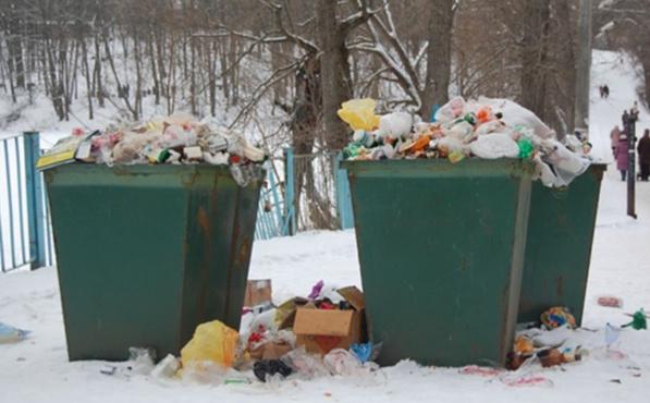 Кладут мусор на землю и жалуются: тюменцев изводят таинственными исчезновениями мусорных баков