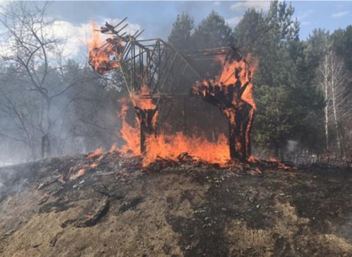 В Тюмени ищут очевидцев поджога арт-объекта в Затюменском парке