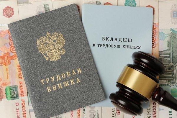 Россиянам оцифровали трудовые книжки - будущее наступило?