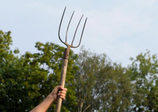 Нож в спину и вилы в живот - тюменские фермеры не поделили алкоголь