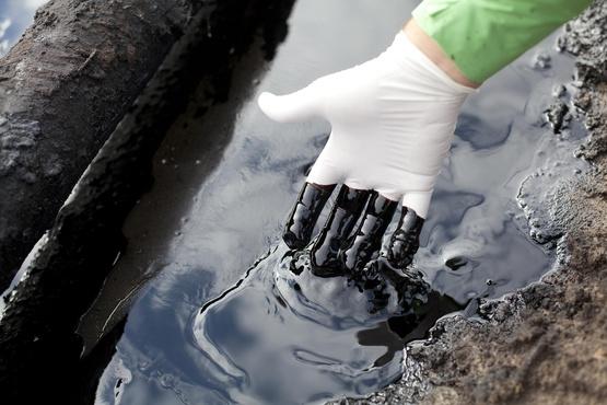 Росприроднадзор сообщает об экологическом ЧП в окрестностях Нижневартовска