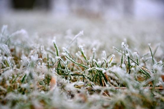 Штормовое предупреждение: на Тюменскую область надвигаются заморозки