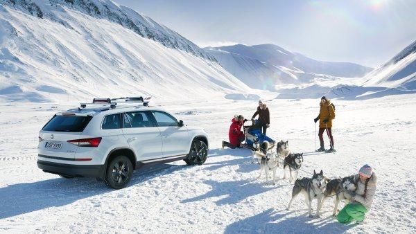 Подготовка «мишки» к холодам: Что нужно сделать со Skoda Kodiaq в преддверии морозов?