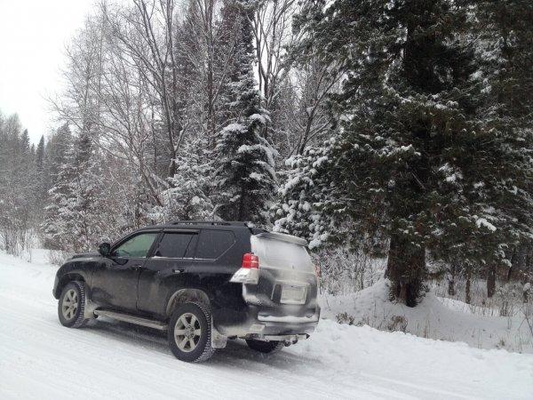 Японская корова на льду: Почему Toyota Land Cruiser Prado не справляется со скользкой дорогой?