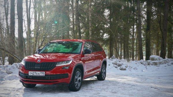 Большой медведь против гордого льва: Peugeot 5008 VS Skoda Kodiaq – выбор лучшего «семейника» до 3 млн рублей
