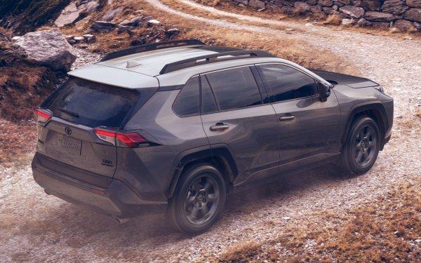 Скорбь, боль и разорение: Как Toyota RAV4 2020 разочаровывает водителей – с этим придётся жить!